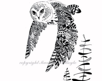 Saw Whet Owl coloring #1, Download drawings