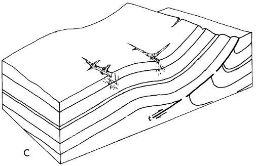 Sawback Range coloring #17, Download drawings
