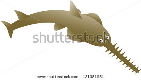 Sawfish clipart #8, Download drawings