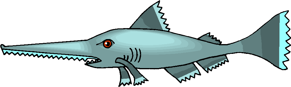 Sawfish clipart #16, Download drawings