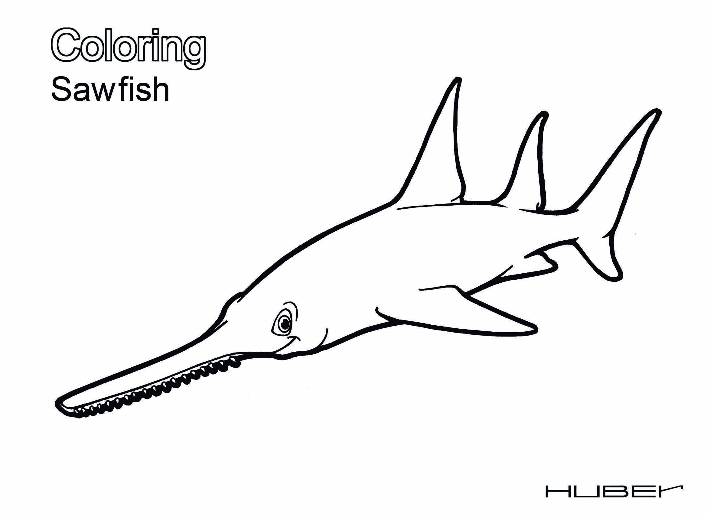 Sawfish coloring #2, Download drawings
