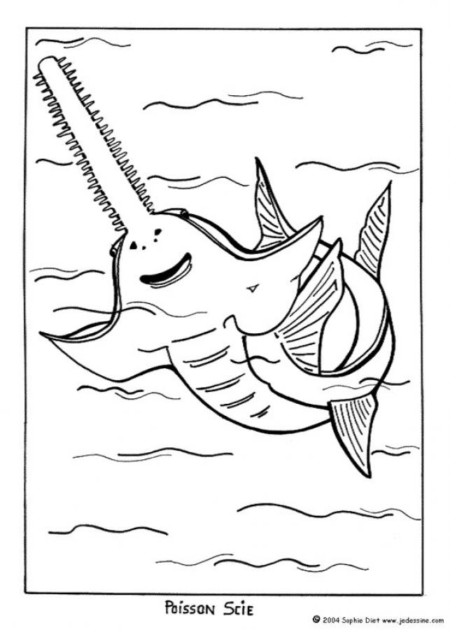 Sawfish coloring #13, Download drawings