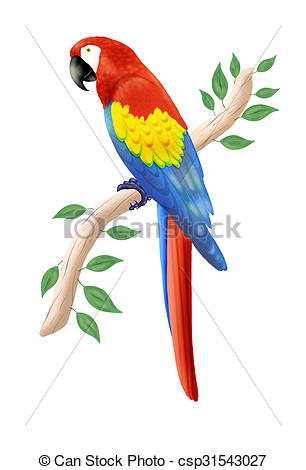 Scarlet Macaw clipart #8, Download drawings