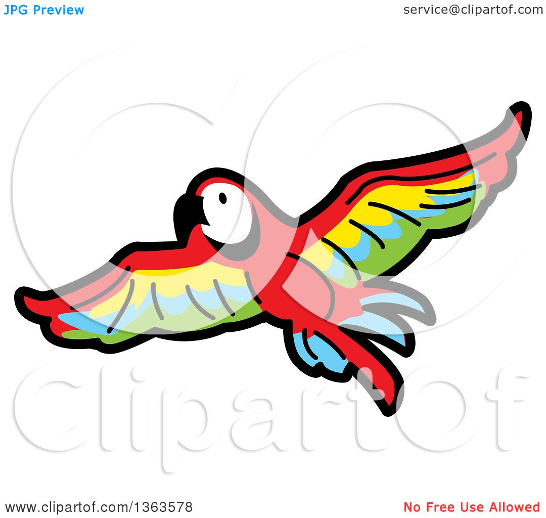 Scarlet Macaw clipart #11, Download drawings