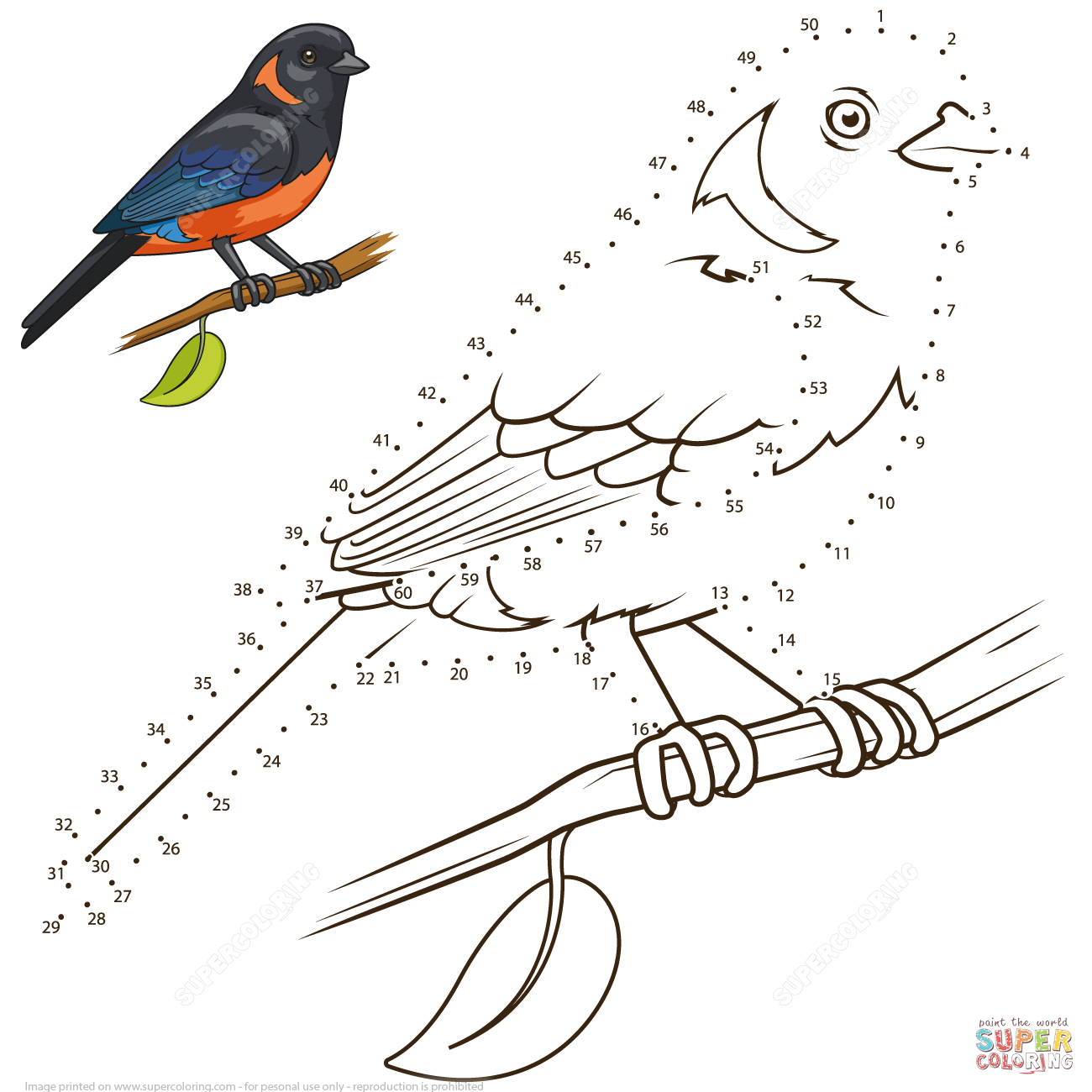 Scarlet Tanager coloring #16, Download drawings