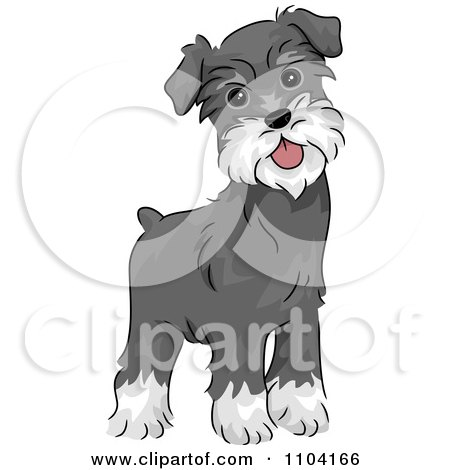 Schnauzer clipart #14, Download drawings