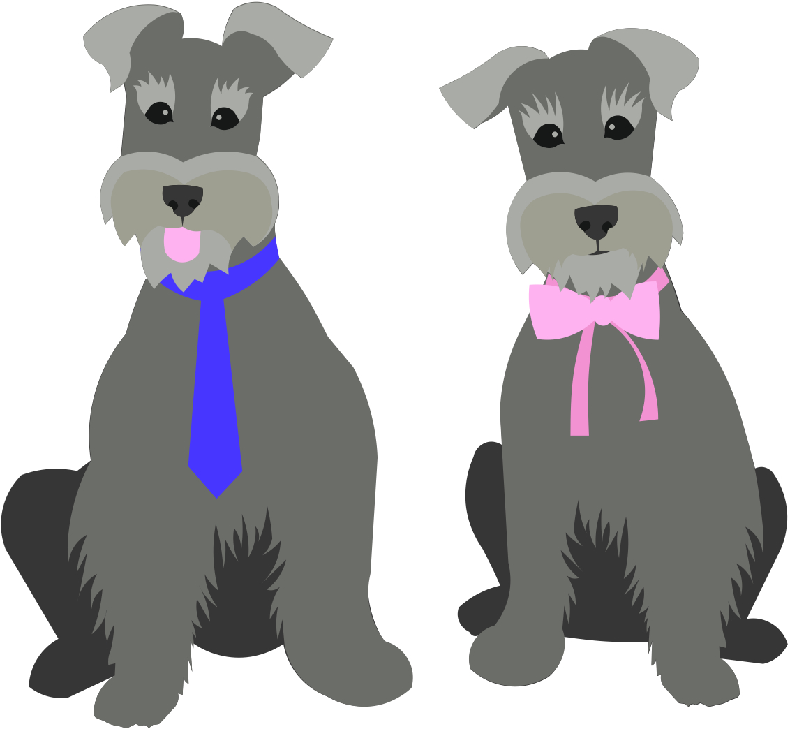Schnauzer svg #2, Download drawings