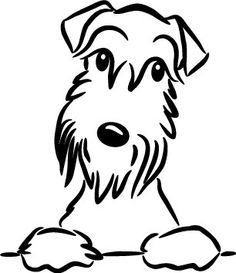 Schnauzer svg #19, Download drawings