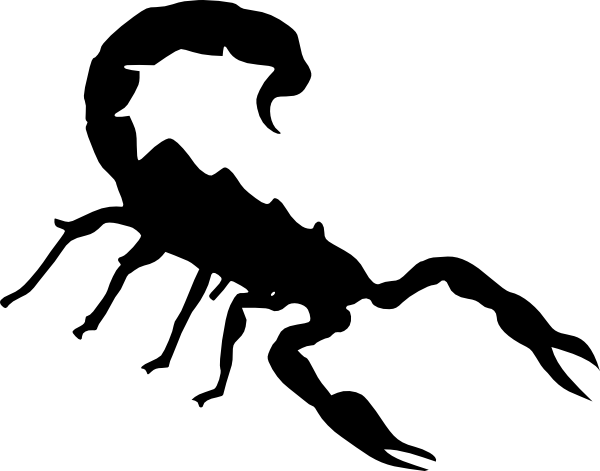 Scorpion clipart #18, Download drawings