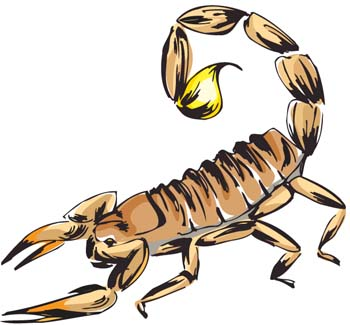 Scorpion clipart #9, Download drawings