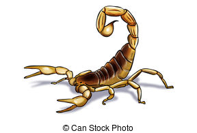 Scorpion clipart #13, Download drawings
