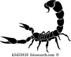 Scorpion clipart #17, Download drawings