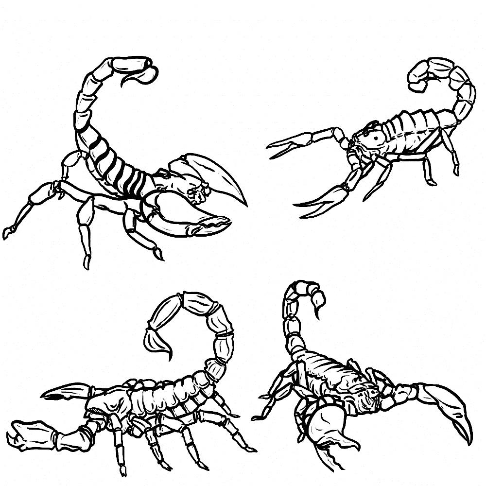 Scorpion coloring #16, Download drawings