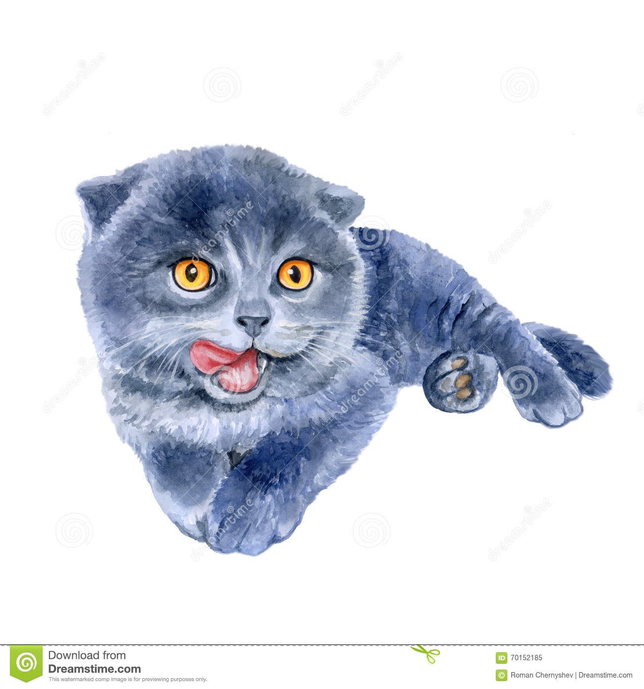 Scottish Fold clipart #9, Download drawings