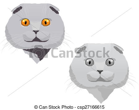 Scottish Fold clipart #3, Download drawings