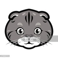 Scottish Fold clipart #1, Download drawings