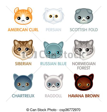 Scottish Fold clipart #2, Download drawings