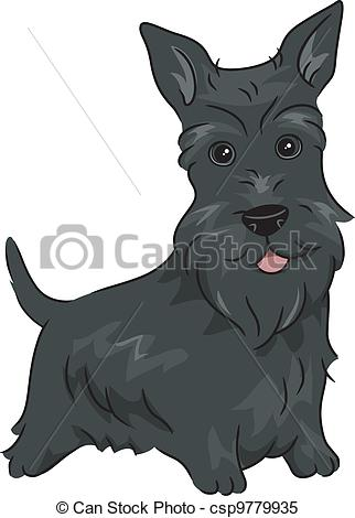Scottish Terrier  clipart #2, Download drawings
