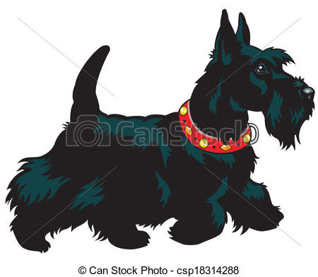 Scottish Terrier  clipart #3, Download drawings