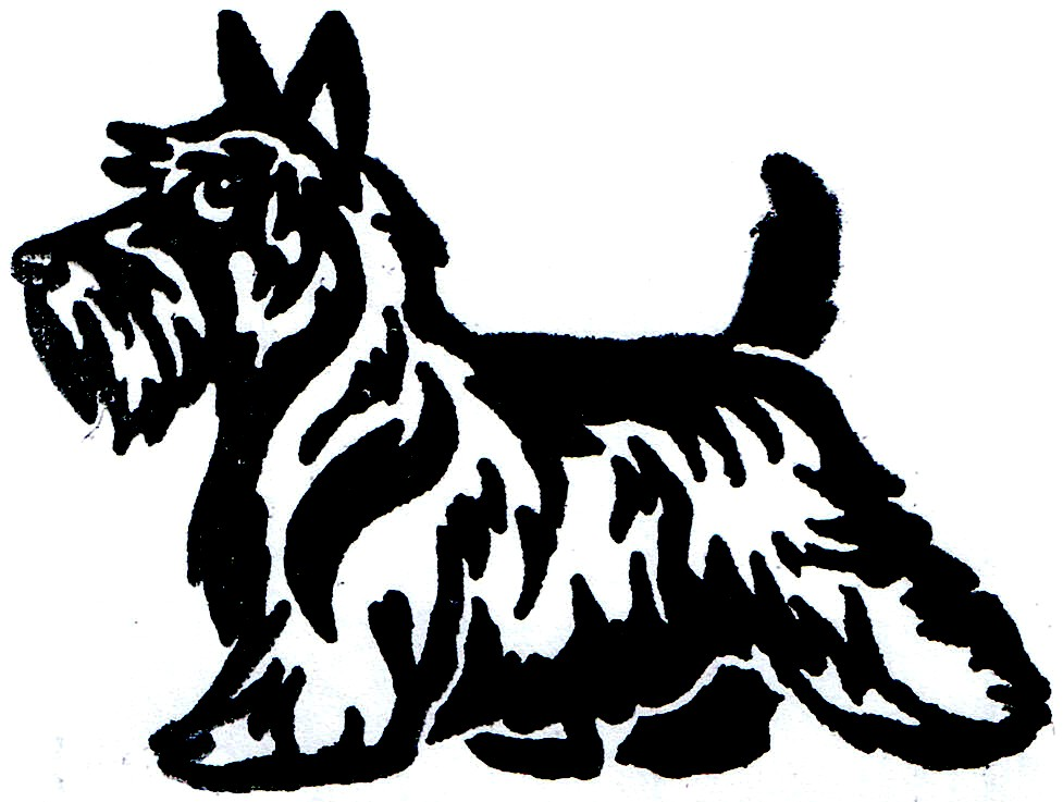 Scottish Terrier  clipart #18, Download drawings