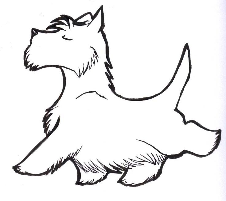 Scottish Terrier  clipart #17, Download drawings
