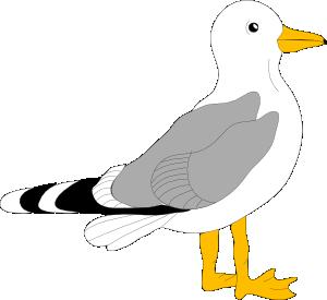 Sea Bird clipart, Download Sea Bird clipart for free 2019