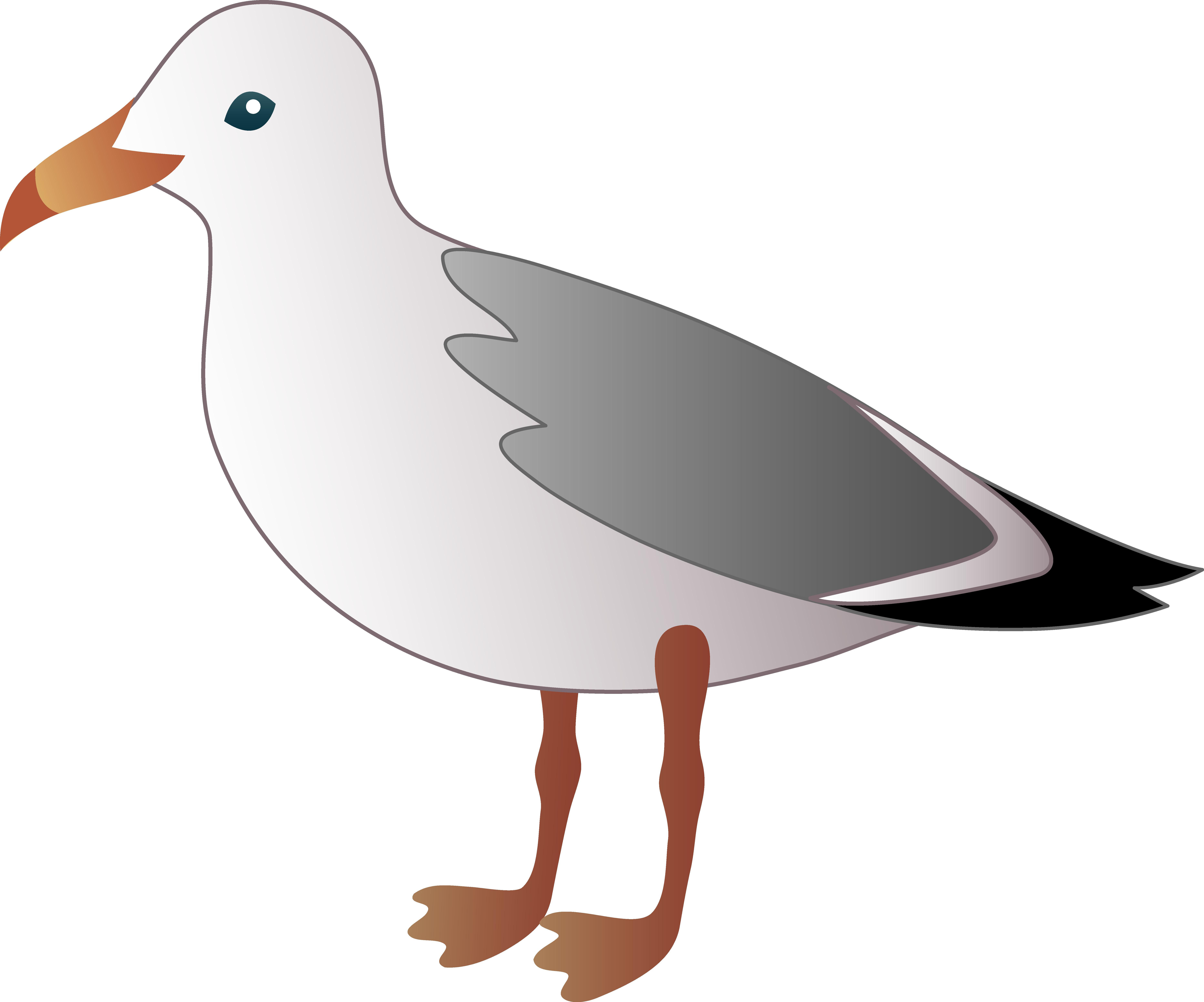 Sea Bird clipart #2, Download drawings