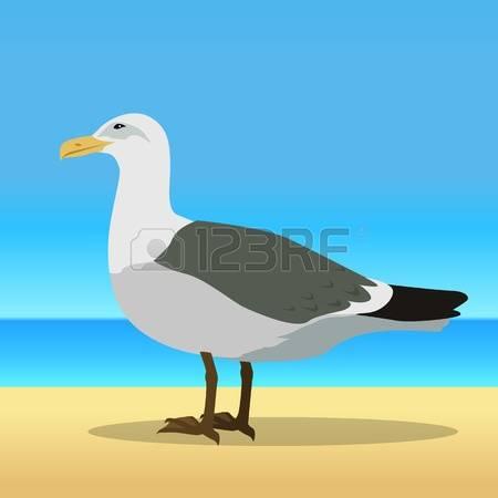 Sea Bird clipart #14, Download drawings