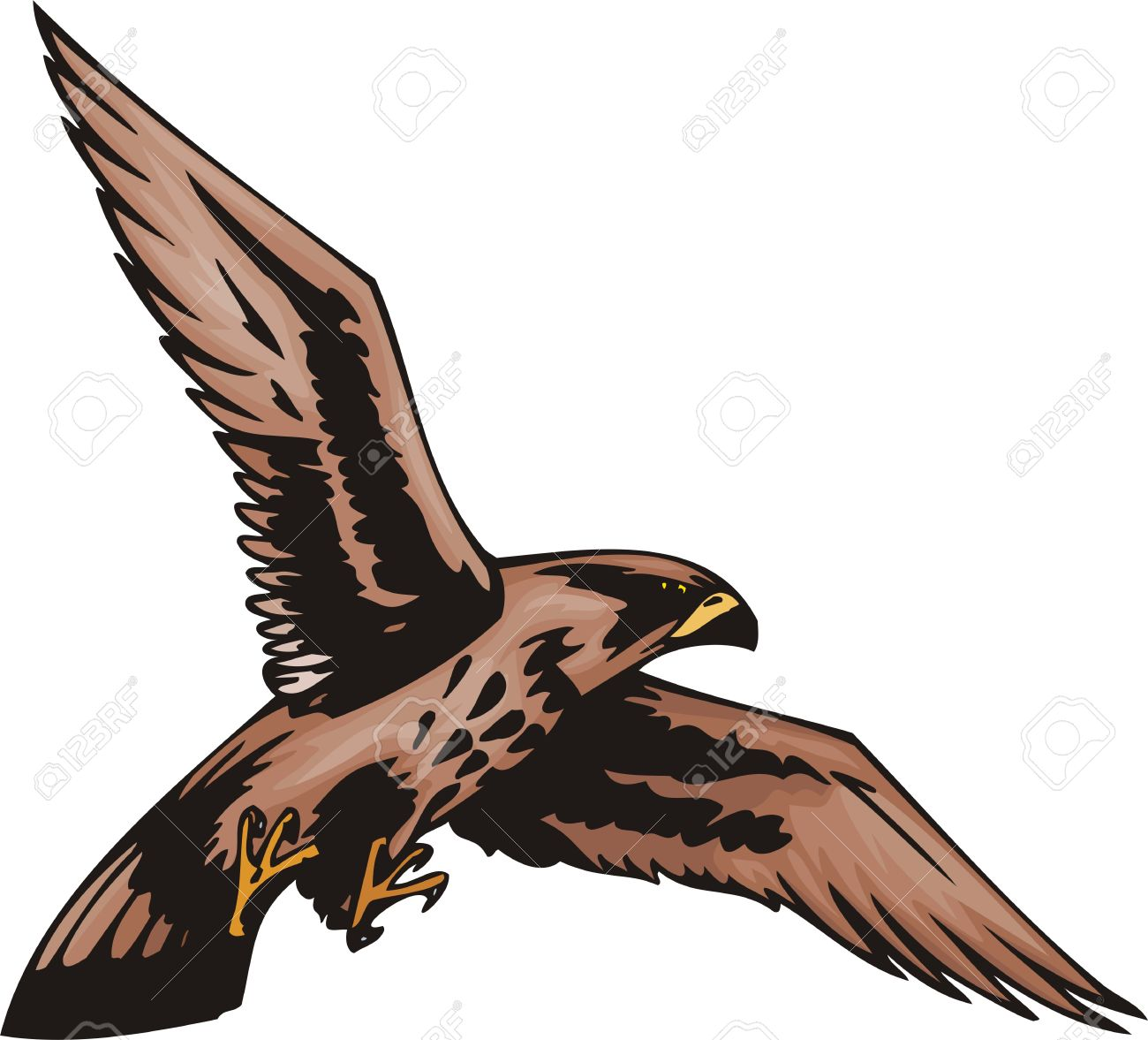 Sea Eagle clipart #11, Download drawings