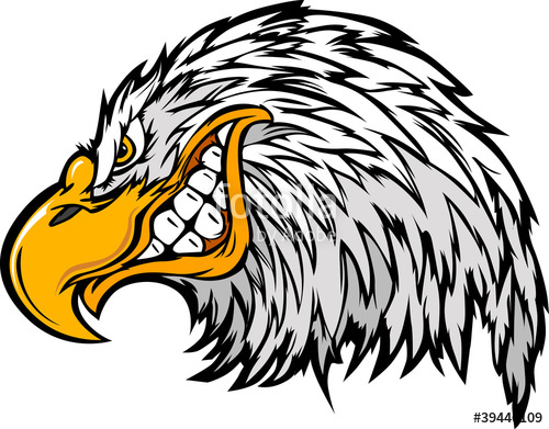 Sea Eagle clipart #3, Download drawings