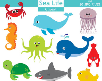 Sea Life clipart #10, Download drawings
