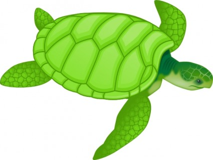 Sea Turtle clipart #18, Download drawings