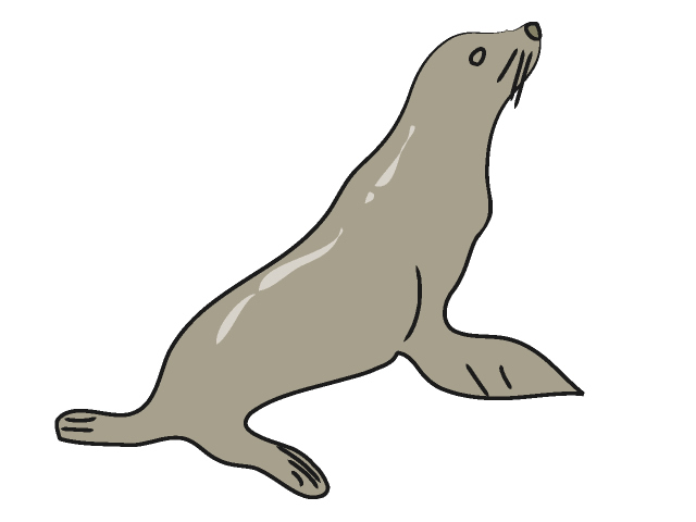 Sea Lion clipart #18, Download drawings