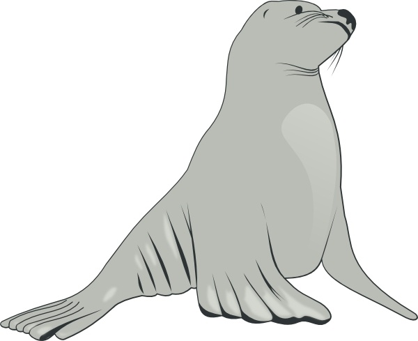 Sea Lion clipart #19, Download drawings
