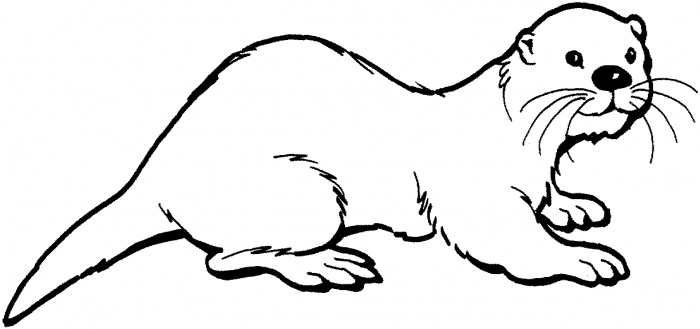 Sea Otter clipart #7, Download drawings
