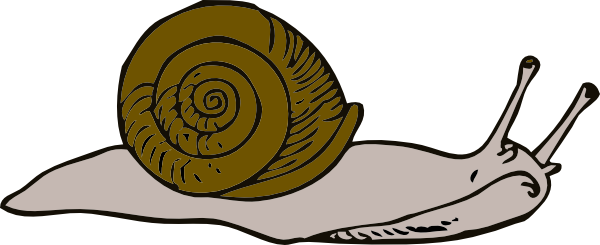Mollusc svg #1, Download drawings
