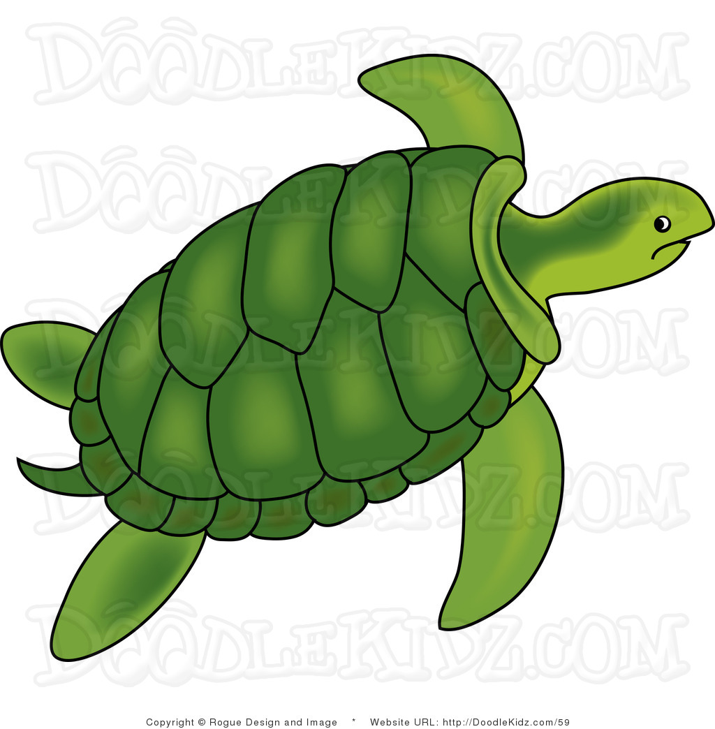 Sea Turtle clipart #12, Download drawings