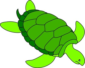 Sea Turtle clipart #8, Download drawings