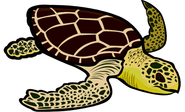 Sea Turtle clipart #9, Download drawings