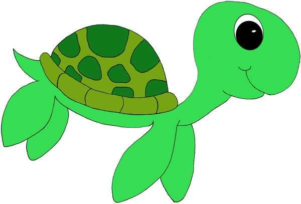 Sea Turtle clipart #17, Download drawings