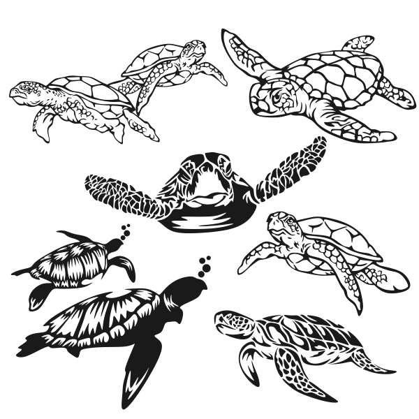 Sea Turtle svg #12, Download drawings
