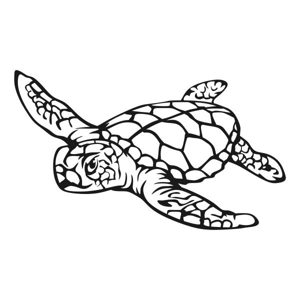 Sea Turtle svg #6, Download drawings