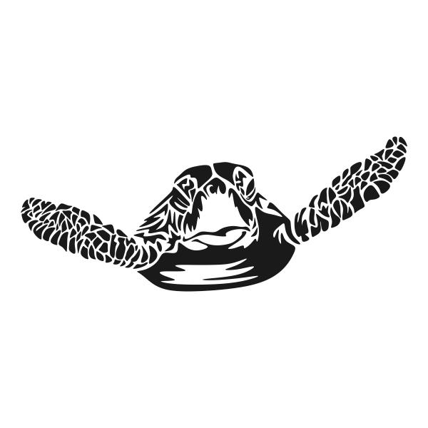 Sea Turtle svg #16, Download drawings