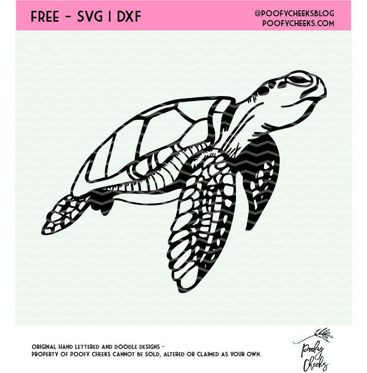 sea turtle svg free #577, Download drawings