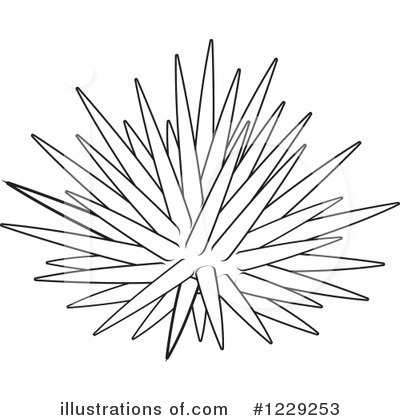 Sea Urchin clipart #19, Download drawings