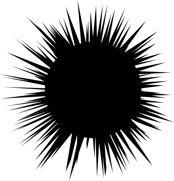 Sea Urchin clipart #13, Download drawings