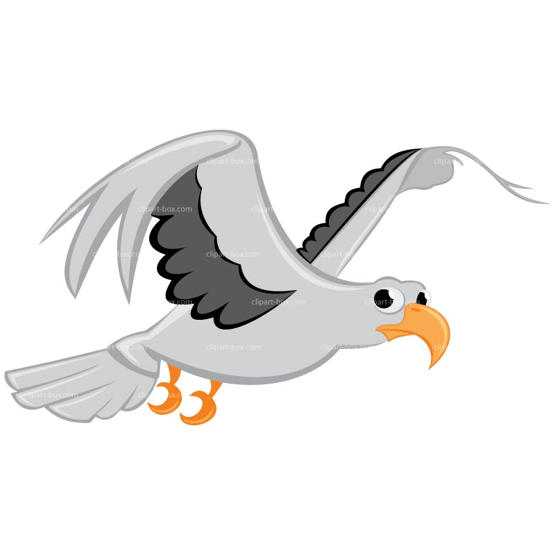 Seagull clipart #15, Download drawings