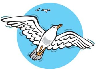 Seagull clipart #3, Download drawings