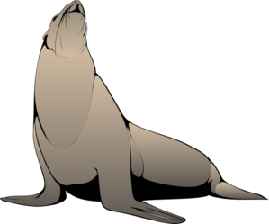 Seal clipart #7, Download drawings