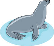 Seal clipart #12, Download drawings